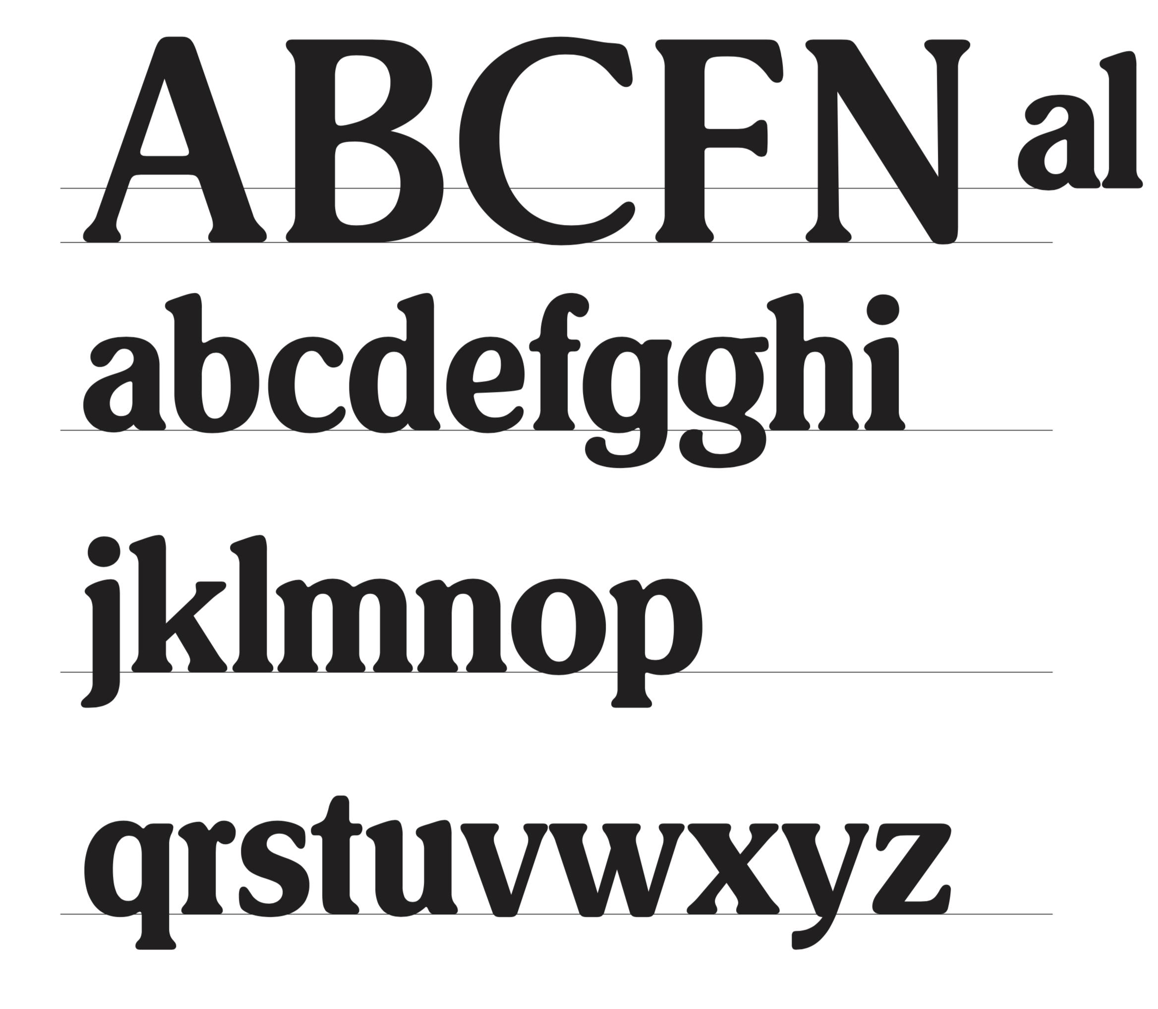 Carnation brand font